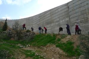 """חומה שכבר השחיתה מאות עצים באדמה החקלאית של תושבי וולאג'ה. עוד מעט האדמה תהיה לרווחת תושבי ירושלים בדמות גן לאומי. יש בג""""ץ כמובן אבל שלט ברוכים הבאים יש גם כן...."""